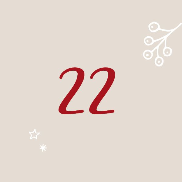 door-Day 22